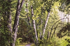 "Marlene Wiedenbaum, PSA-MP, Leggett Road Rail Trail, pastel on paper, 24"" x 18"" $3600"